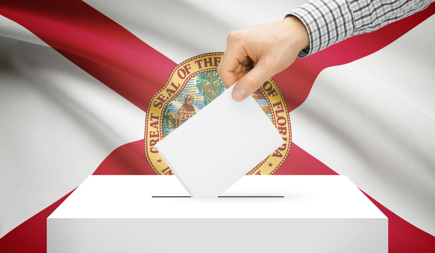Florida Flag and voting hand